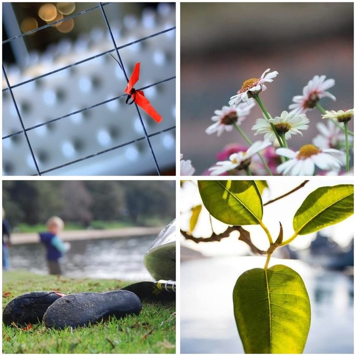 Photography Competition 13: Focusing on the Foreground Montage