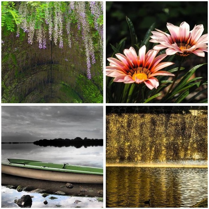 Photography Competition 19: Open Montage
