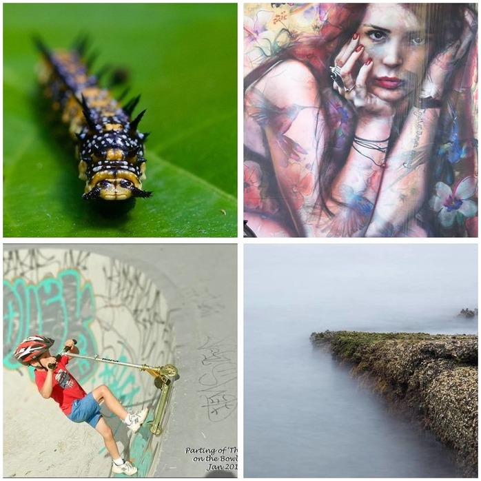 Photography Competition 24: Open Photography Montage