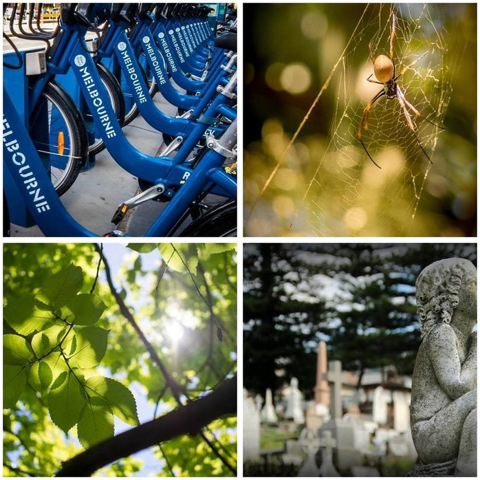 Photography Competition 52: Aperture Montage