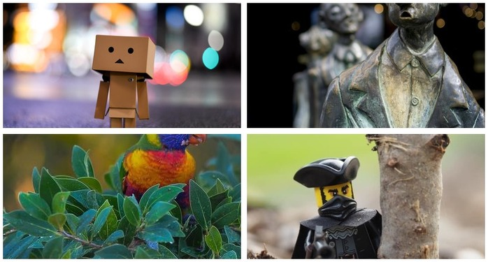 Photoh Competition 104: Aperture and Bokeh Montage