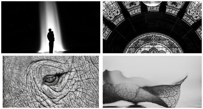 Photoh Competition 110: Black&White Photography Finalists Montage