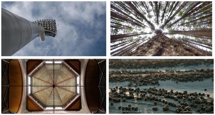 Photoh Competition 111: Exploring Camera Angles Finalists Montage