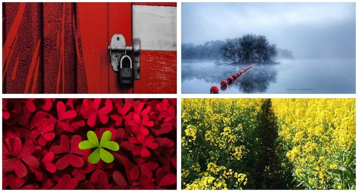 Photoh Competition 112: Using Colour in Photography Montage