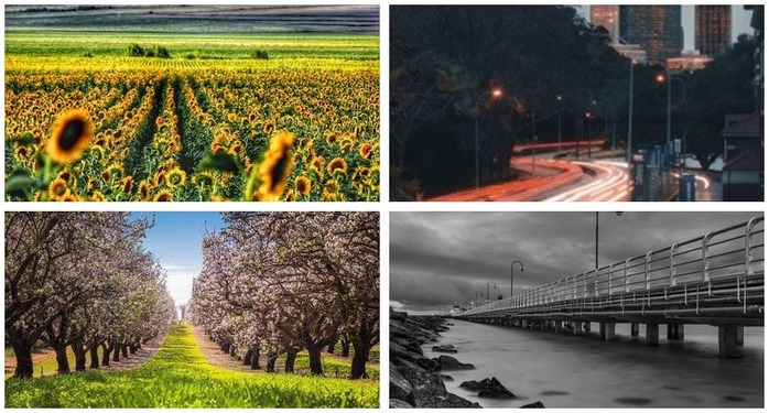 Photoh Competition 116: Leading Lines in Photography Finalists Montage
